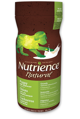 nutrience-puppy-milk-replacer