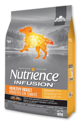 infusion-dog-healthy-adult