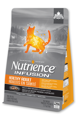 infusion-cat-healthy-adult